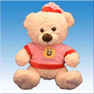 عروسک پولیشی خرس خوشحال