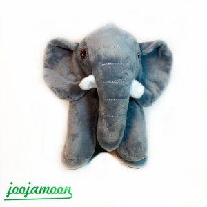 فیل باشتی